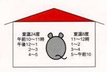 実験動物に温度ストレスをかける条件