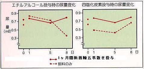 腎臓病モデル実験動物での新茵陳五苓散の排尿効果