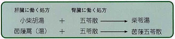肝臓と腎臓の両方に効く漢方処方