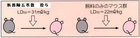 急性アルコール中毒マウスに対する漢方薬の効果