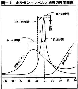 女性ホルモンレベルと排卵時間の関係