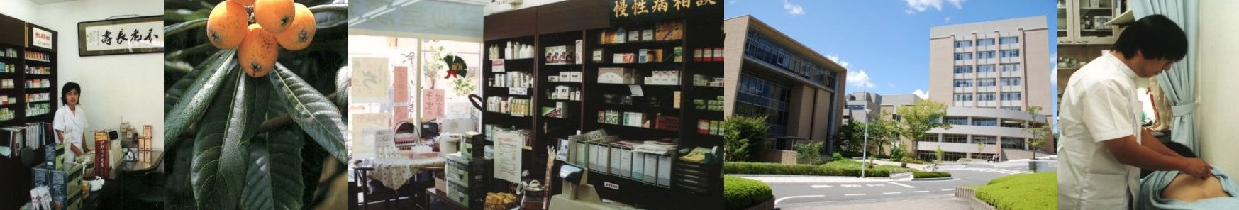 漢方薬、びわ温灸、美容鍼灸の三砂堂漢方