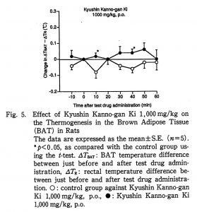 ジャコウ製剤の褐色脂肪組織活性化の研究
